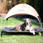 Outdoor Dog With Sun Canopy